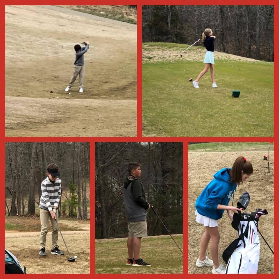MS Golf 1