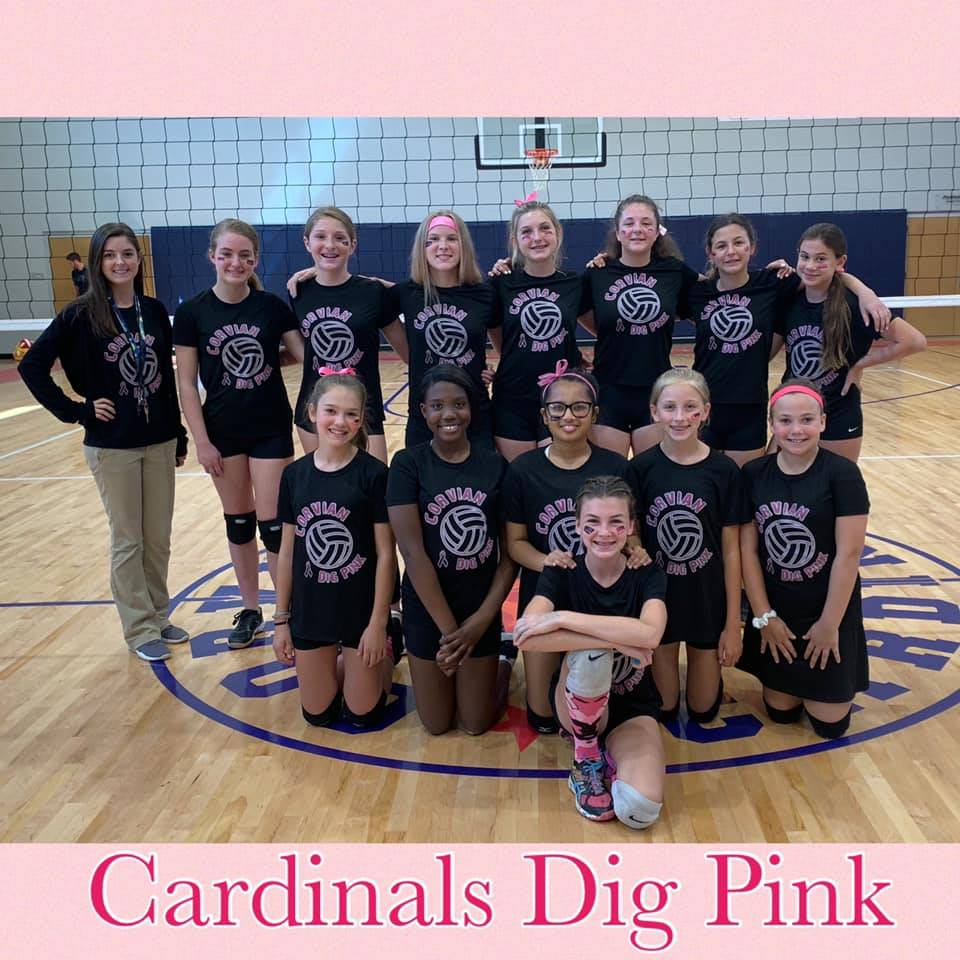 MS Volleyball Dig Pink